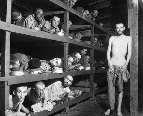 koncentrációs tábor