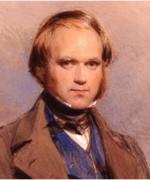 A fiatal Darwin